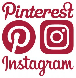 Find Dortek on Pinterest and Instagram!